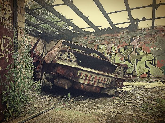 Beauty Of Decay