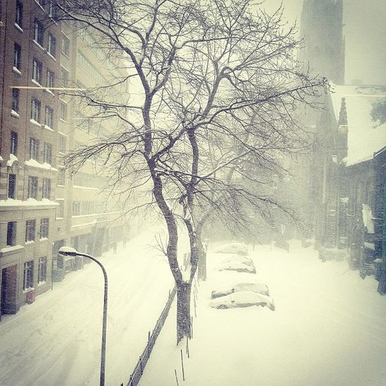 Tempête de neige à Montréal . Snowstorm