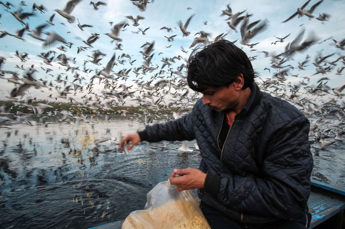 From the Series: A Sky Full of Siberian Seagulls. A man feeding migratory birds in Yamuna Ghat in Delhi. He believes in good karma and feels his duty to feed these birds. According to him, these birds wait for someone like him to come every day with food. They also recognize Mr. Ramnath (boatman) as he is a familiar face for them now. Bestoftheday Bird Climate Change Colors Delhi EyeEm Eyeemoninstagram Food Fujifilm Global Warming Instagood Instagram Man Migratory Birds Photo Essay Rokinon Sky Storytelling Streetphotography Travel Water Yamuna
