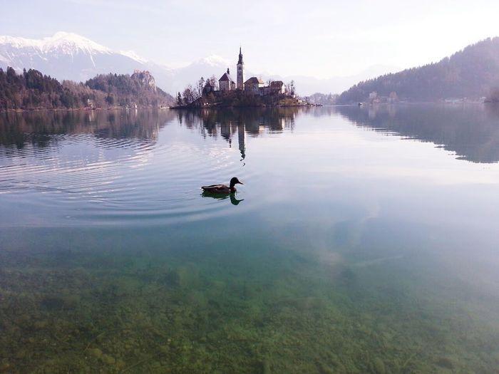 Man in lake against sky