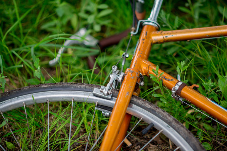 Bike Close-up Cropped Day Focus On Foreground Grass Green Color Growth Metal Metallic Nature No People Outdoors Part Of Plant Selective Focus Vintage Bike Wheel