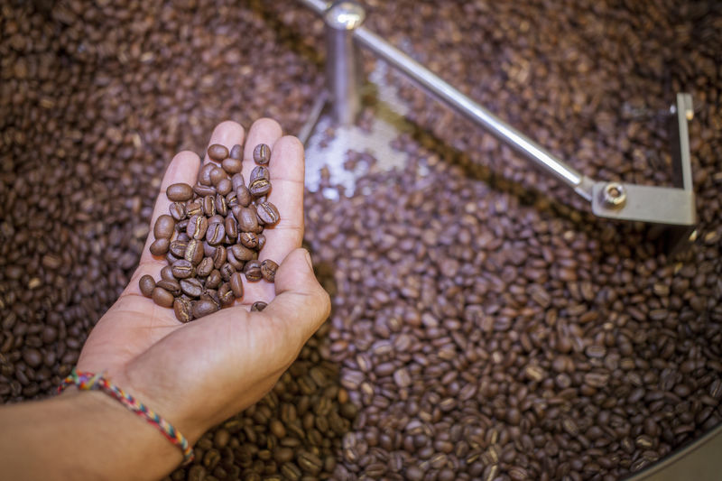 Cropped image of hand holding roasted coffee beans over grinder