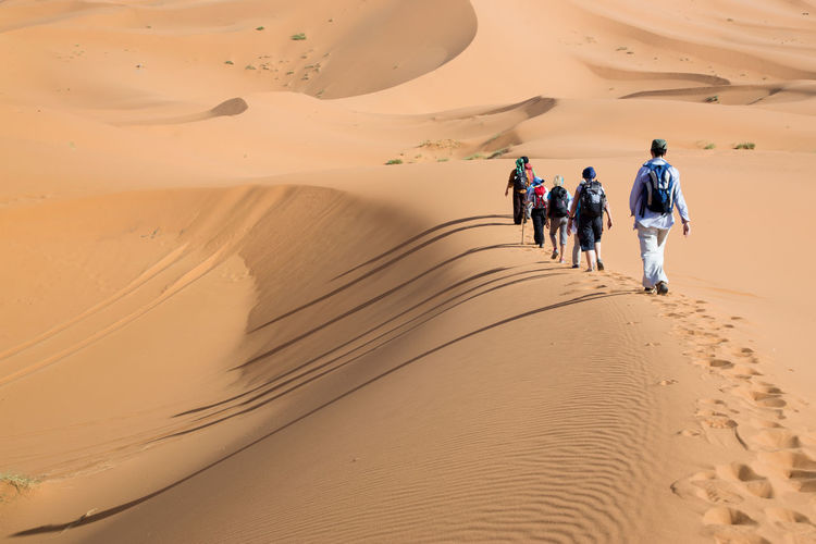 Group of people walking on sand dunes. Long shadows on the left side. Day Desert Dunes Hiking Landscape Leisure Activity Medium Group Of People Merzouga Merzouga Sahara Desert Trippin Nature Ouarzazate Outdoors Sahara Sahara Desert Sand Sand Dune Scenics The Way Forward Travel Destinations