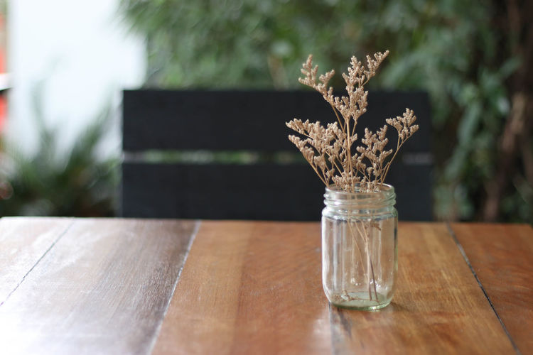 Cafe Close-up Day Drink Drinking Glass Freshness Horizontal Indoors  Motion Nature No People Plank Table Water Wood - Material