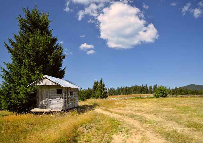 Hiking at Rodopi mountains, Bulgaria. Bułgaria Country Road Rodopi Mountain The Great Outdoors - 2018 EyeEm Awards Blue Built Structure Cloud - Sky Day Field Grass Green Color Land Landscape Nature No People Outdoors Shed Sky Sunlight Tranquil Scene Tranquility Tree