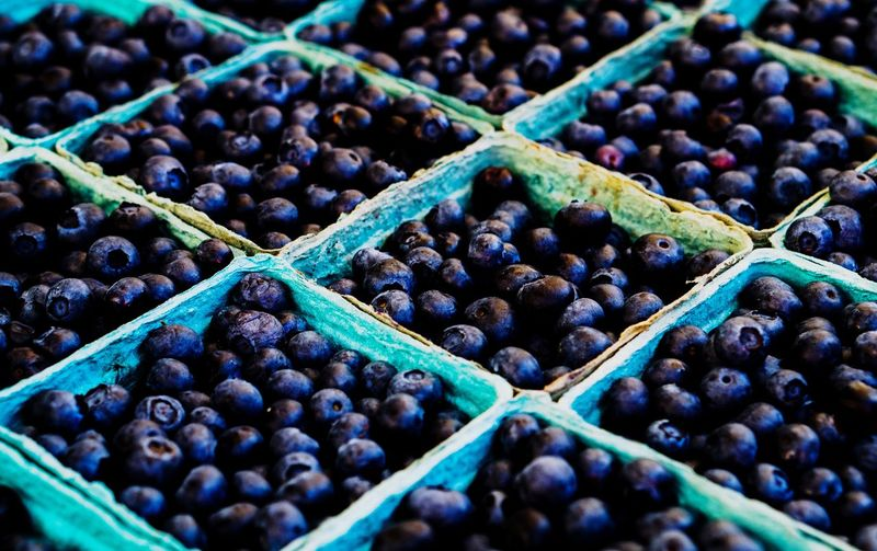 Fruit Food And Drink Healthy Eating Blueberry Organic Food Agriculture Biology Freshness Social Issues Healthy Lifestyle Close-up Day Grape No People Market Outdoors Nature Supermarket
