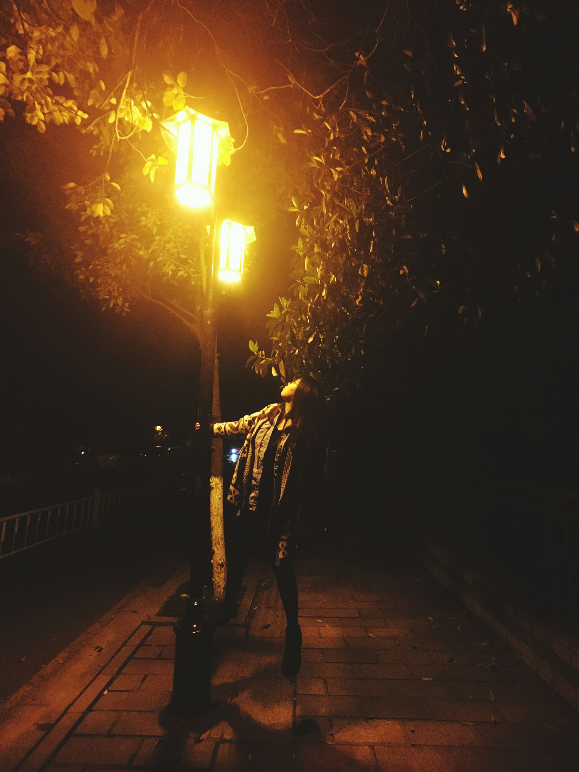 tree, night, full length, lifestyles, illuminated, walking, the way forward, silhouette, leisure activity, shadow, rear view, street, sunlight, footpath, standing, men, outdoors, street light