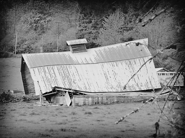 Decay Abandoned Architecture Building Exterior Built Structure Country Decay Damaged Day Decay And Dereliction Decaying Barn Decline Deterioration Field Land Mode Of Transportation Nature Nautical Vessel No People Obsolete Old Outdoors Plant Ruined Transportation Tree
