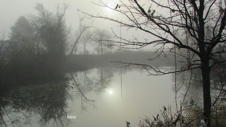 From The Archives Around My Neighborhood Foggy Morning Clam River Walkway Reflection Cadillac Michigan