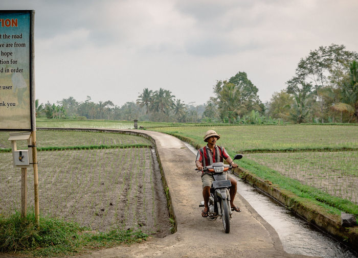 Bali Lifestyle Poor  Rice Paddy Bicycle Cloud - Sky Day Field Full Length Growth Landscape Lifestyles Mode Of Transport Motorbike Nature One Person Outdoors People Real People Rice Field Rural Scene Sky Transportation Tree Young Adult