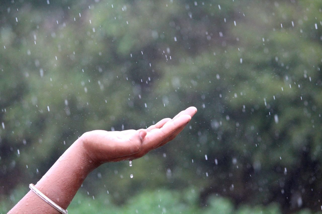 human hand, hand, human body part, one person, real people, body part, finger, human finger, focus on foreground, lifestyles, wet, unrecognizable person, day, rain, nature, drop, water, outdoors, raindrop, snowing, human limb, rainy season