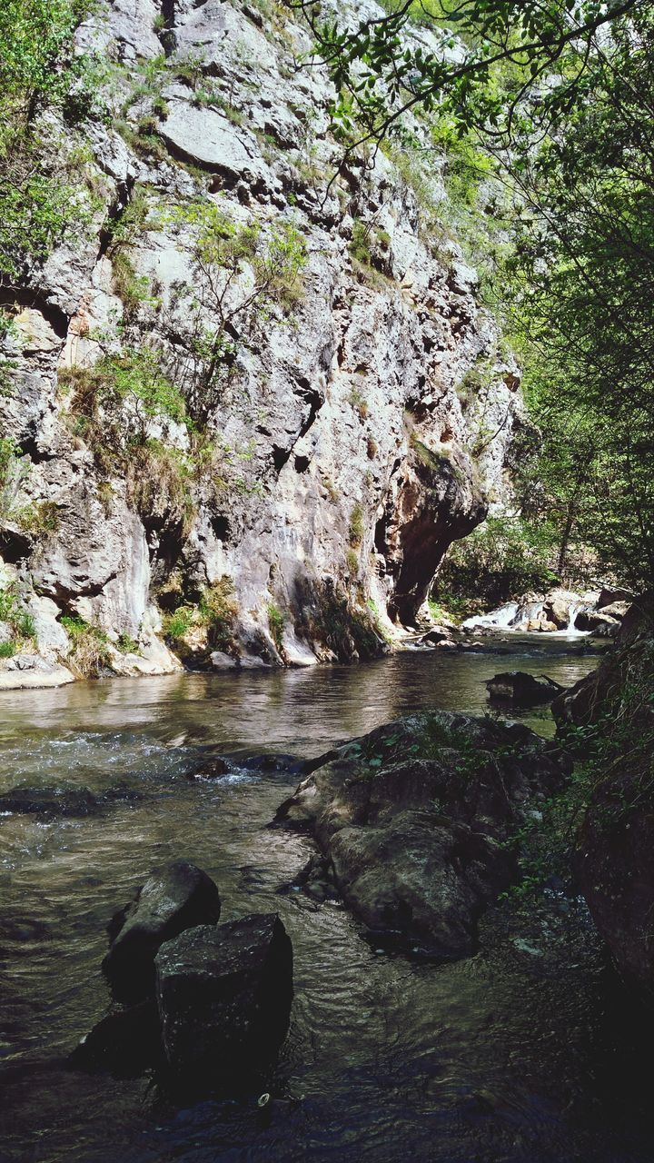 rock - object, nature, rock, no people, tranquility, beauty in nature, outdoors, day, water, tree