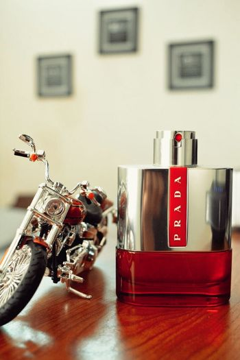 Prada Colonge Photography Smellsgood Red