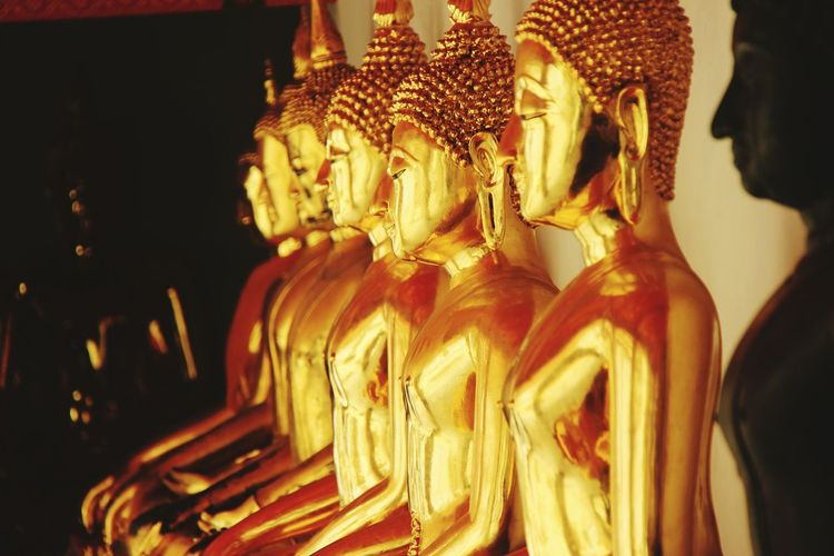 Row of buddha statues in wat pho