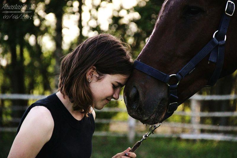Horse People Love ♥ Beautiful Ilikehorse красота Beauty лошадка Sky Day конныйспорт One Animal лошадь