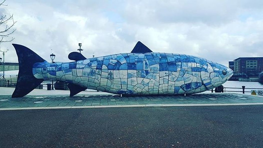 Hello big fish!! 🐟 Belfast Irland Visitni Visitbelfast Instabelfast Latergram Vscocam VSCO Vscoirland DiscoverNI Thebigfish