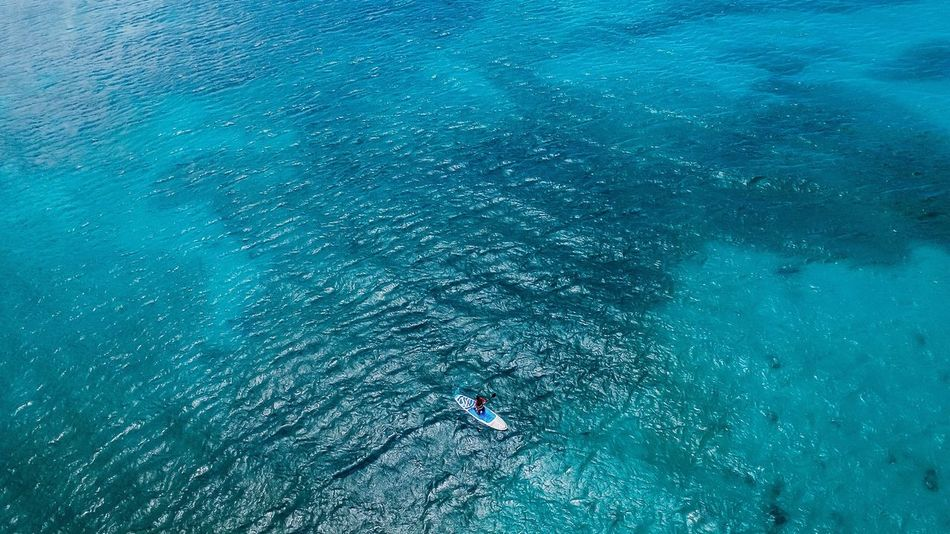 High Angle View Blue Water Leisure Activity Real People Sea Nature Adventure Day Waterfront One Person Outdoors Lost In The Landscape Wake - Water Drone Photography Aerial View Aerial Photography Phantom 3 Vacations Men Lifestyles Beauty In Nature Nautical Vessel Paddleboarding Wave
