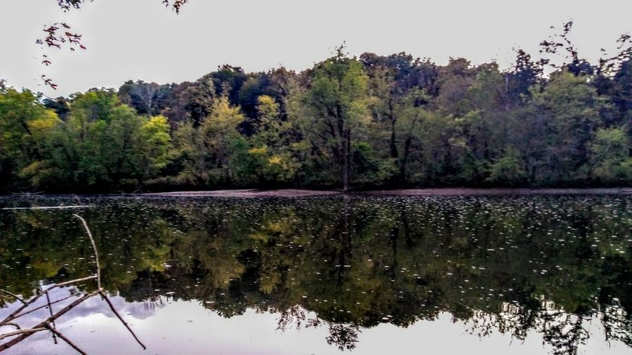 River Wabash River Fishing Glass Tree Water Bird Lake Forest Reflection Tree Area Sky