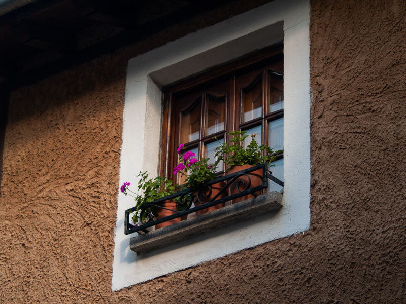 City Home Reflection Rural Architecture Architecture Building Building Exterior Built Structure Bunch Of Flowers Day Facade Building Facade Detail Flower Flower Arrangement Flower Head Flower Pot Flowering Plant Freshness Glass Growth House Nature No People Outdoors Plant Pot Pot Plant Potted Plant Rural Building Rural House Spring Springtime Urban Urban Life Wall - Building Feature Window Window Box Window Frame Window Reflections Window Sill