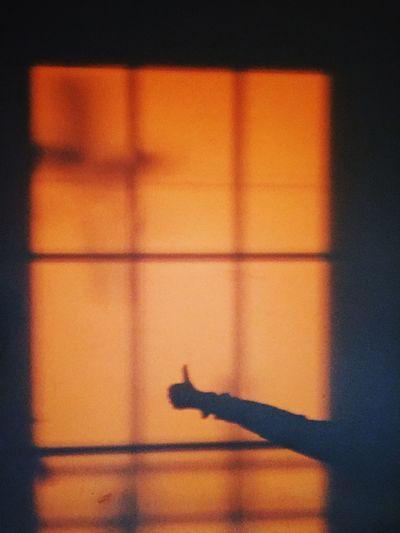 Yeah! Shadow