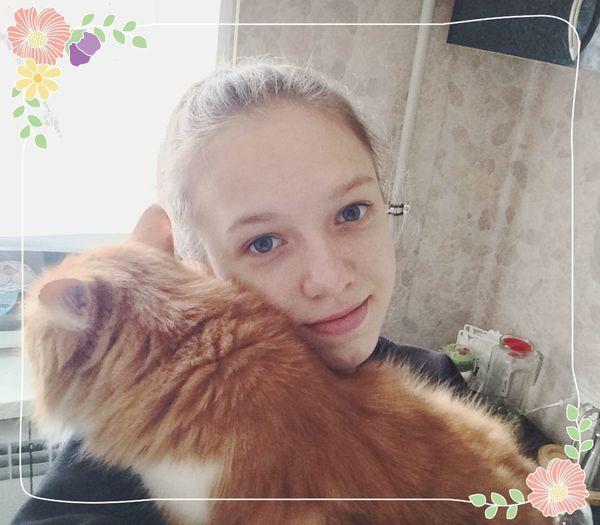 кошка сима любимая моя