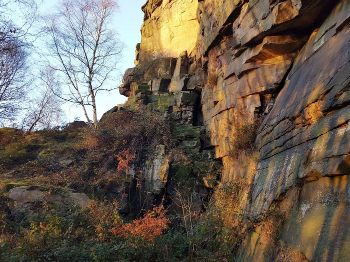 Low Angle View Day Nature Full Frame No People Outdoors Beauty In Nature Tree Close-up Sky Weathered Rough Autumn Hell Hole Climbing Quarry Landscape Hell Hole Rocks Heptonstall Textures And Surfaces Light And Shadow Rocks Stone Freshness Low Angle View