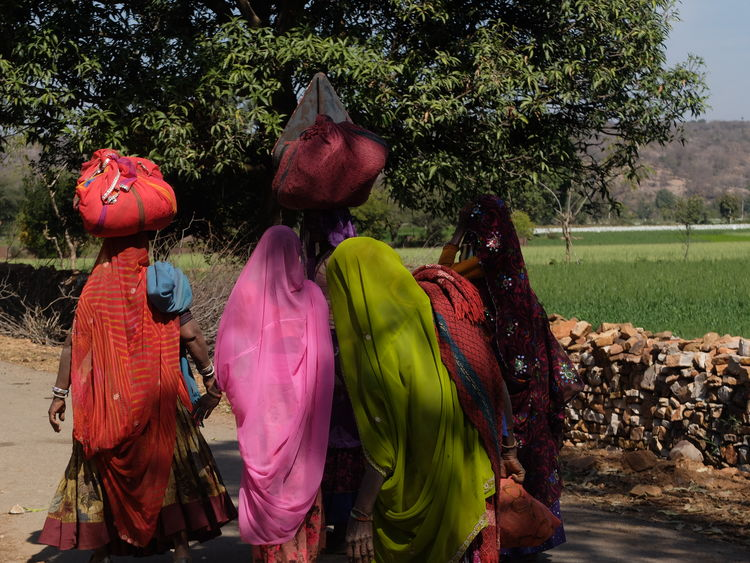 INDIA Holyday Colours People Real People Rear View Sari Women Workaday Life Working Women