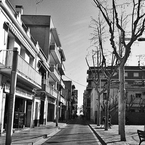 Man vs nature... Barcelona Streetphoto SPAIN Streetphoto_bw Gang_family Nature_collection Eye4photography  Ee_daily Manvsnature  Blackandwhite