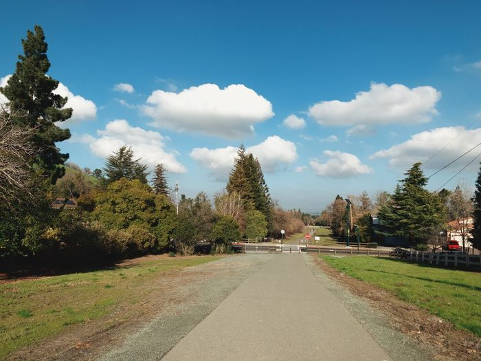 """Cloud Run"" A group of clouds whisks across a blue sky over a local open space trail in the San Francisco East Bay Area, California. Suburban Exploration Trees Walking Path Trail Blue Sky Clouds And Sky Clouds Tree Sky Cloud - Sky Nature The Way Forward Diminishing Perspective vanishing point Outdoors"