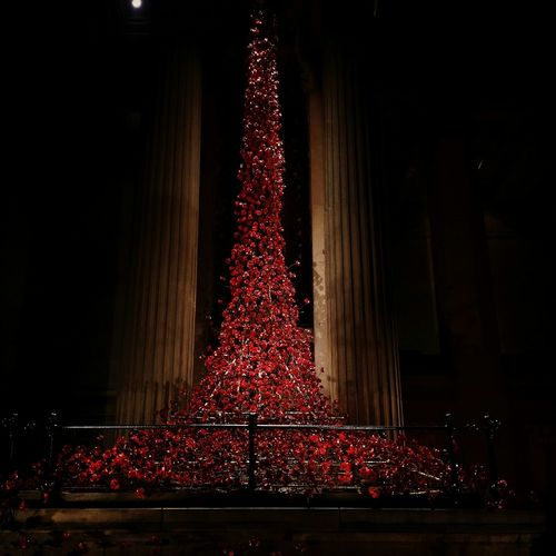 Weeping Window St Georges Hall Liverpool Poppies  Poppies Tour