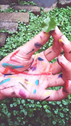 Paint Art Nature