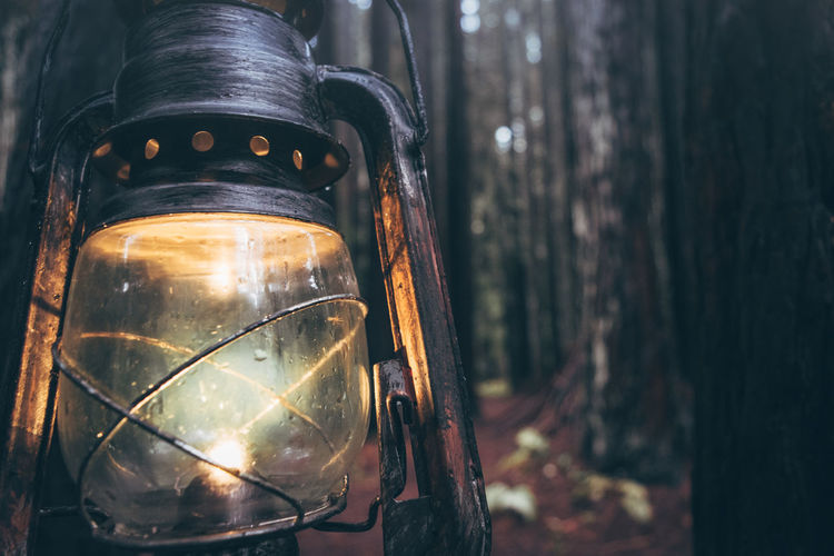 Close-up Day Focus On Foreground Lighting Equipment Metal Nature No People Oil Lamp Old-fashioned Outdoors