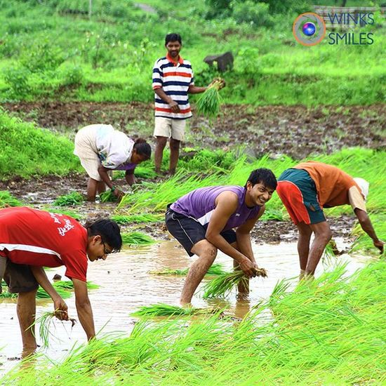 ~~~~~~~~~~~~~~~~~~~~~~~~~~~~~~~~~~~~ 🇬 🇦 🇩 🇪 🇸 🇭 🇼 🇦 🇷 🌾 🇩🇦🇲 ~~~~~~~~~~~~~~~~~~~~~~~~~~~~~~~~~~~~ 🌿🍀🌳 AN UNEXPLORED PARADISE 🌳🍀🌿 ~~~~~~~~~~~~~~~~~~~~~~~~~~~~~~~~~~~~ PEOPLE AT WORK IN ONE OF THE PADDY FIELD AT GADESHWAR 🌾🌾🌾🌾🌾🌾 ~~~~~~~~~~~~~~~~~~~~~~~~~~~~~~~~~~~~ Gadeshwar Dam is situated near Panvel, Navi Mumbai, Maharashtra, India between Chanderi, Mhaismal, Peb and Matheran Hills. It is a small dam which can be reached easily from Panvel, located 8 kms away. There is also a small river crossing at this site, which ends at Dudhani village. The dam is surrounded by green hills and paddy fields. This place is best for trekking, bird watching and excellent for some quiet peaceful time to spend. An excellent place to spend time during monsoon! A Hot picnic Spot! ~~~~~~~~~~~~~~~~~~~~~~~~~~~~~~~~~~~~ All images are subject to ©copyright No repost, regram or reproduce without prior permission All rights reserved Gadeshwardam Touristspot Navimumbai Panvel Newpanvel Landscape Scenery Dhodaniriver Landscapephotography Raigad Maharashtra_ig India Mumbairay Convexrevolution Yin_india _soi _oye Indianphotographer Desidiaries Incredibleindia Photographers_of_india Instalandscape Click_india_click Everydaymumbai Things2doinmumbai explorethroughcamera MyMumbai bombaylive mumbaibestgram
