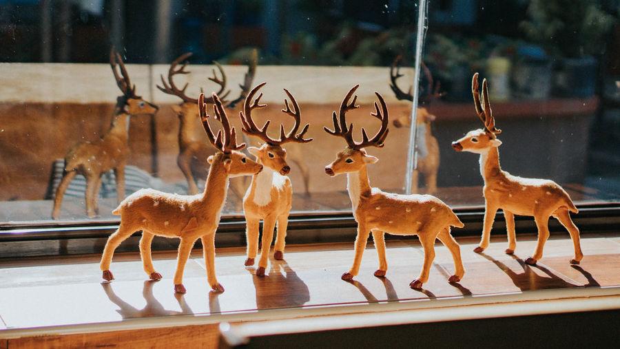 Deer in a row