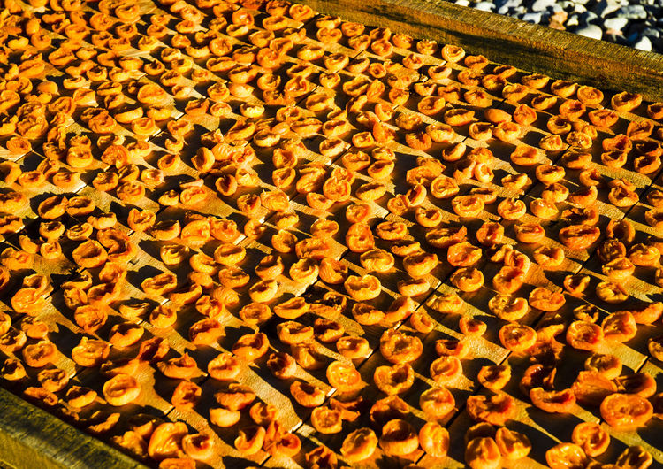 Apricots Cape Province Little Karoo South Africa Sun Dried Apricots Abundance Apricots On The Floor Close-up Day Dried Apricots Dried Fruits Food Freshness Fruits Ladismith Nature No People Orange Colour