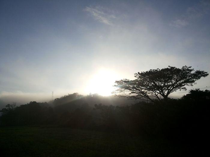 Sunrise. Back