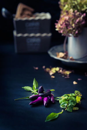 wilted hydrangeas in small metal pot, fallen petals and chilies Autumn Battered Black Background Cake Pan Chiaroscuro  Chili Pepper Dark Darkness And Light Dish Fall Fall Beauty Flower Hydrangea Kitchenware Metal Moody No People Pepper Petals Purple Silvery Spicy Food Still Life Photography Wilted Wilted Flower