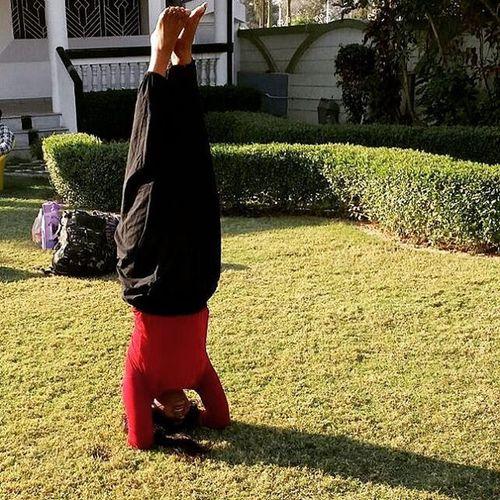 Me Sirsasana Morning Practise Yoginiland Yogicdiet Yogi Yogini Yogacamp Yogis Nature Peace Meditation Inversion Inversions Inversionsmakeyouhot Inversiones Love Life Yogaearth Likers Likeforlike Tags Tagsforlikes Following followme follow4follow