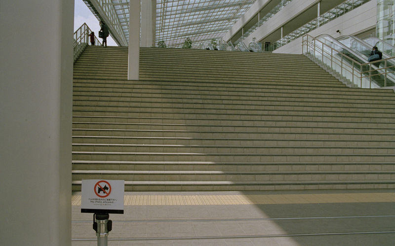 Architecture Dog Sign Film No People Outdoors Scene Stairs Streetphotography Tokyo Tranquility