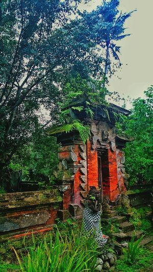 This Place Is Sacred Hotspring Ancient Hindu Temple Tabanan I❤BALi