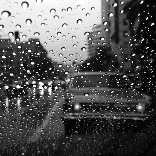 Rain in