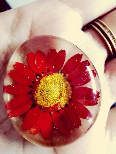 Refrigerator Magnets Flowerprint Beautiful Lovetotakepics Love To Take Photos ❤ ... Showcase April