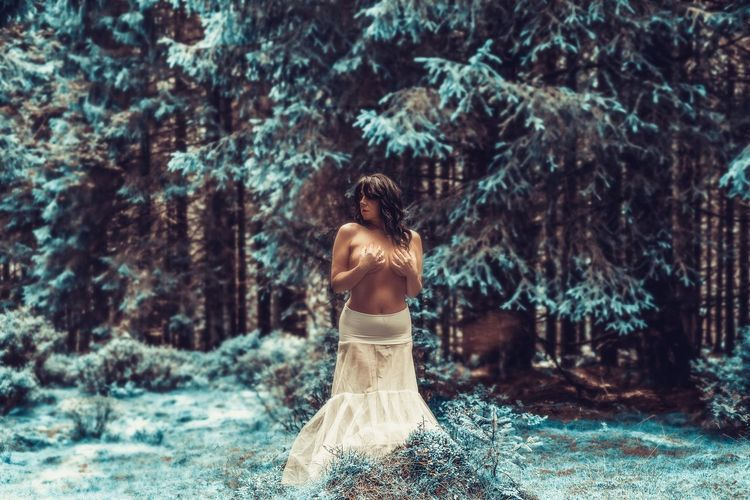 Rear view of woman with umbrella in forest