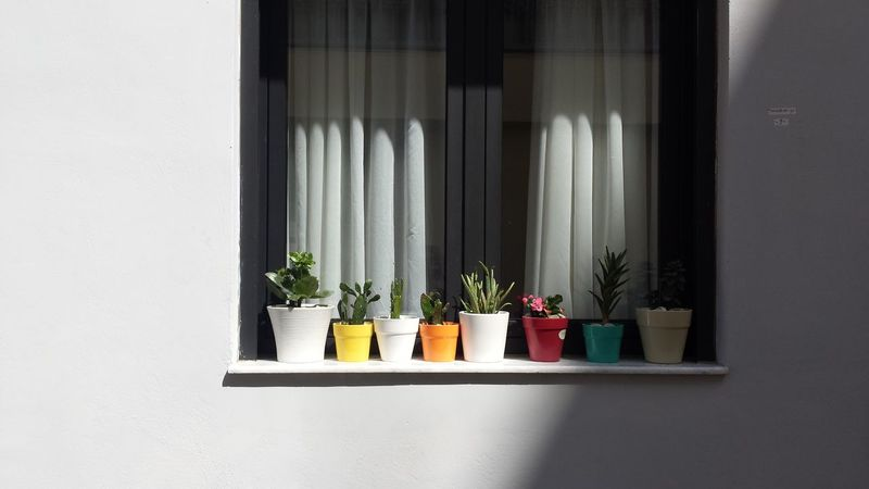 Window with Flowerpots No Edit No Filter Beauty In Ordinary Things Little Details Things Organized Neatly in Heraklion , Crete Showcase April Fine Art Photography Home Is Where The Art Is