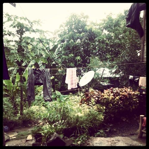 It's Really Rainingoutside :-( - JustGoBored @Home Bacungan RainyAfternoon