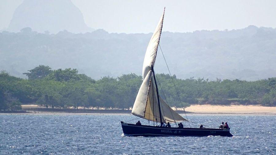 Modern sail