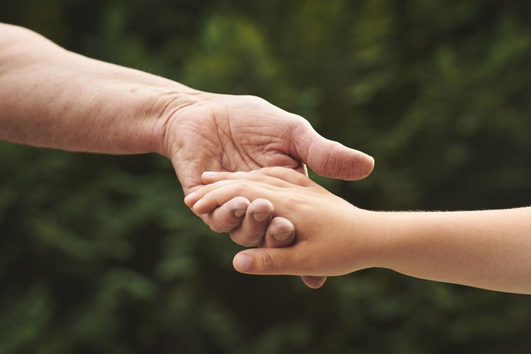 Hand Human Hand Two People Hand In Hand Grandson Grandmother Young Old Connection Child Close-up Unrecognizable Person Togetherness Care Positive Emotion Real People People Grandfather Palm Generations Assistance Help Hugging Outdoors