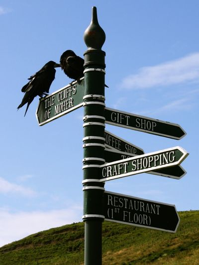 Irland Cliffs Of Moher  Road Sign Clear Sky Instructions Street Name Sign Communication Guidance Direction Text Arrow Symbol Western Script