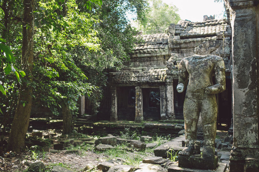 Siem Reap Cambodia Angkor Architecture Built Structure Religion Belief Place Of Worship Spirituality History The Past Tree Building Plant Ancient Sculpture Day Art And Craft Old Representation Nature Old Ruin Ancient Civilization No People Outdoors Stone Material Archaeology Architectural Column