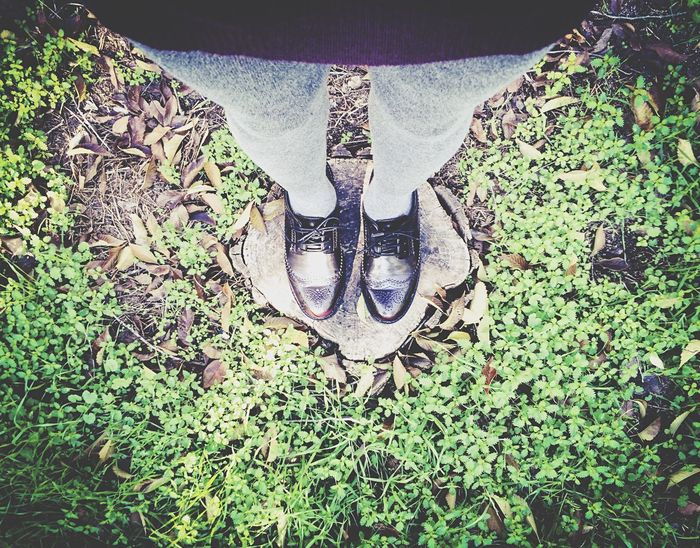RePicture Masculinity Well Turned Out Shoes Nature Trees EyeEm Nature Lover Open Edit Green Colors MyNewShoes Happy November MyFavorite